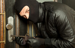 Closeup robber Royalty Free Stock Photography