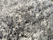 Closeup of a Rock. A close up of the surface of a rock in Spearfish Canyon Royalty Free Stock Photo