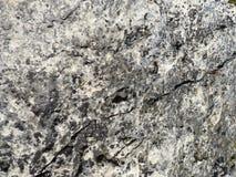 Closeup of a Rock Royalty Free Stock Photo