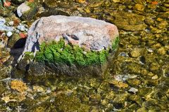 Rock in the water. Closeup of a rock in a flowing mountain water covered with moss royalty free stock photos