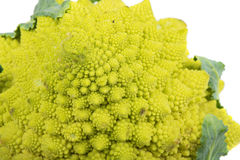 Closeup of Romanesco broccoli Stock Photos