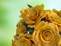 Closeup of rose flower bouquet Stock Image
