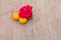 Closeup of rose and orange Royalty Free Stock Photo