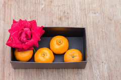 Closeup of rose and orange Royalty Free Stock Images