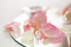 Closeup of rose petals and diamond Stock Image