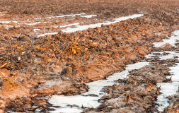 Closeup of rough farmland in winter Royalty Free Stock Photo