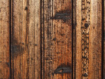 Closeup of Rough Wooden Slats. With well visible cell structure Royalty Free Stock Photo