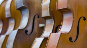 Closeup of row of double basses resting against a wall. Close together royalty free stock images
