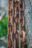 Closeup of a rusted metal chain Stock Image