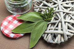 Closeup of sage and rosemary leaves Royalty Free Stock Photo