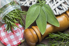 Closeup of sage and rosemary leaves in a jar Royalty Free Stock Photos