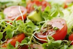Closeup of salad Stock Images