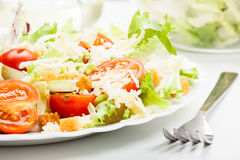 Closeup of salad. Lettuce, tomato, cucumber Royalty Free Stock Photo