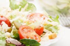 Closeup of salad. Lettuce, tomato, cucumber Stock Photo