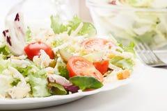 Closeup of salad. Lettuce, tomato, cucumber Royalty Free Stock Photos