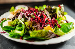 Closeup Of Salad In Plate Royalty Free Stock Photography