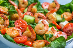 Closeup of salad with shrimp and vegetables Royalty Free Stock Images