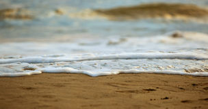 Closeup of salt water foam on the sand. Stock Images