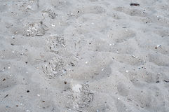 Closeup of sand pattern Royalty Free Stock Photography