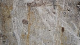 Wall Texture 4. Closeup of sandstone wall in a French town Stock Photos