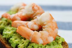Closeup sandwich with avocado guacomole and seafood srimp royalty free stock photos