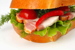 Closeup of sandwich with chili pepper Stock Photography