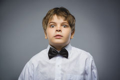 Closeup Scared and shocked little boys. Studio shot portrait over gray background. Human emotion face expression. Life Stock Photography
