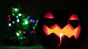 Closeup of scary holiday halloween carved glowing pumpkins. and Christmas tree. Flashing colored lights. Jack-O-Lantern. Closeup of scary holiday halloween stock footage