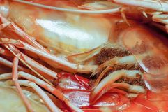 Closeup scene of bake shrimp this is favorite Thai style food fresh and nature nutrition cuisine delicious for your good health d. Aily serve ready to eat stock photo