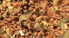 Closeup scene of pouring pet food to the floor