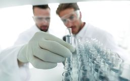 Scientist and assistant studying the solution in the tube Royalty Free Stock Photos