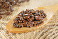 Closeup scoop of coffee beans Royalty Free Stock Image