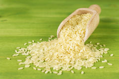 Closeup scoop of rice Stock Image