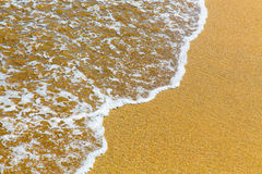 Closeup of sea foam on wet golden sand with copy space Royalty Free Stock Image
