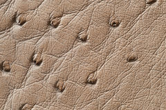 Closeup of seamless beige leather texture Royalty Free Stock Photos