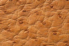 Closeup of seamless beige leather texture Stock Photo