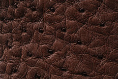 Closeup of seamless brown leather texture. For background Stock Photo
