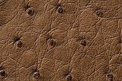 Closeup of seamless brown leather texture. For background royalty free stock images