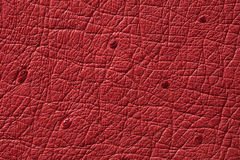 Closeup of seamless red leather texture Royalty Free Stock Images