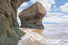 Hopewell Rocks Seaside Flower Pot Stock Photography