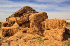 Closeup separate stacks of large industrial haystack Royalty Free Stock Photos