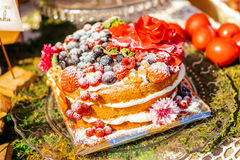 Closeup on set of cake with berry Royalty Free Stock Photos