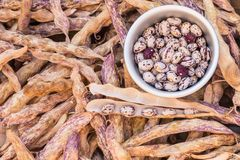 Shelled and unshelled haricot beans. Closeup of shelled and unshelled haricot beans Royalty Free Stock Images