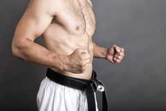 Closeup of shirtless young man in white kimono and black belt tr Stock Image