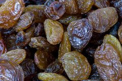 Closeup shoot of the dry raisins. Closeup shoot of the pile of organic dry raisins Royalty Free Stock Photography