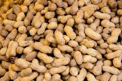 Closeup shoot of the peanuts. Closeup shoot of plie of the unpeeled  healthy peanuts Stock Image