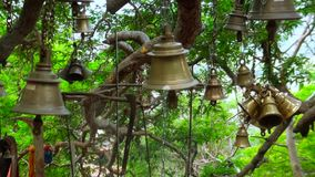 Ancient bells on a temple in India, shot of hindu temple bell. Closeup shot of ancient bells at nature green background, ancient bells on a temple in India stock footage