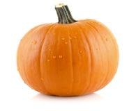 Closeup shot of beaded pumpkin isolated on white Stock Photo