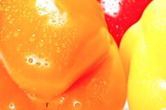 Closeup shot of bell peppers Stock Photography