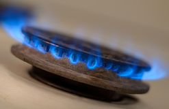 Closeup shot of blue fire from domestic kitchen stove. Gas cooker with burning flames propane gas.  royalty free stock images